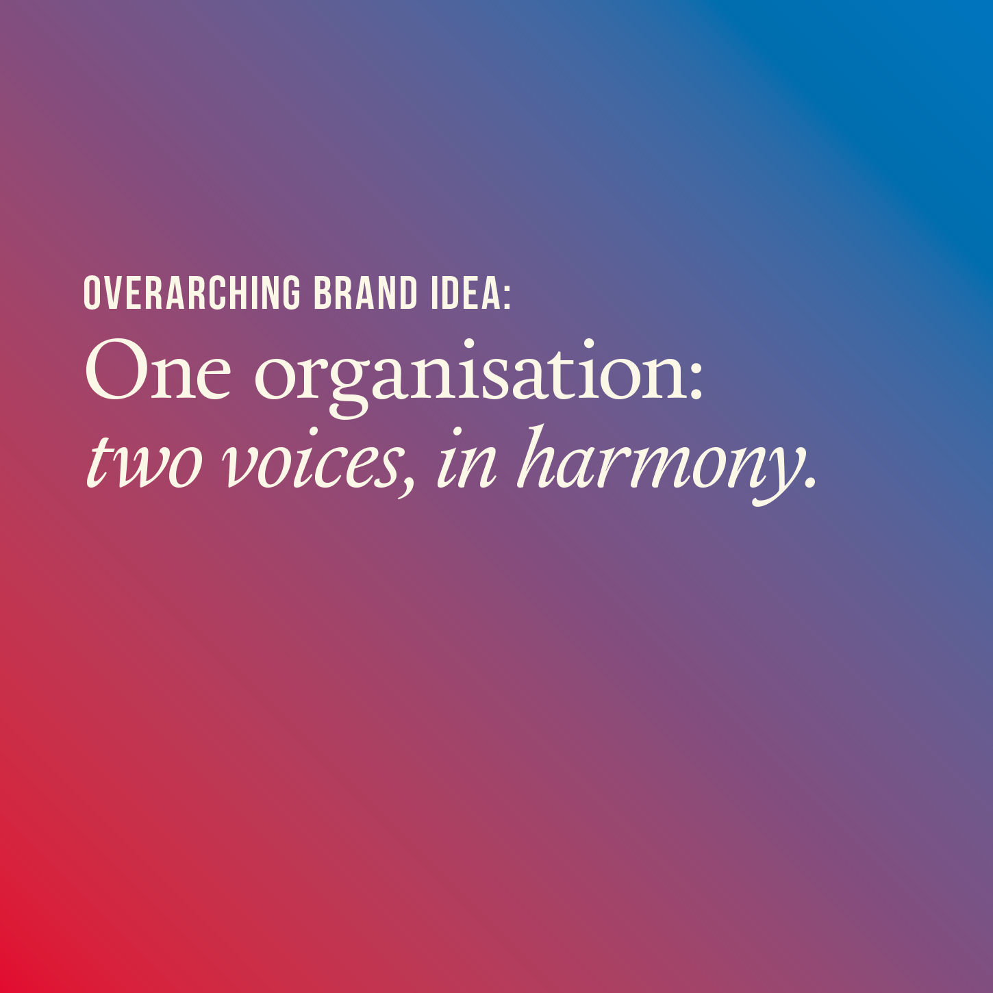 Overarching brand idea: one organisations, two voices, in harmony